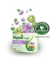Phytoxil Transit Comprimés B/20 à Lyon
