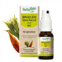 Rinalgem Respiration Spray Buccal Gc29 Bio Spray/15ml à Lyon