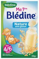 Blédina Ma 1ère Blédine Nature 250g à Lyon