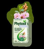 Phytoxil Immunité Gélules B/40 à Lyon