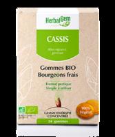 Herbalgem Gomme Cassis Bio B/24 à Lyon