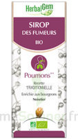 Herbalgem Sirop Bio Des Fumeurs 150ml à Lyon