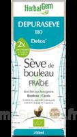 Depuraseve Solution Buvable Bio Fl/250ml à Lyon